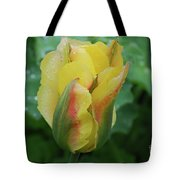 Unusual Yellow Tulip With Dew On The Petals Tote Bag