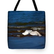 Up And Away Tote Bag by Amanda Struz
