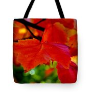 Up Close And Colorful Tote Bag