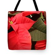 Up Close And Personal Poinsettia  Tote Bag