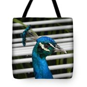 Up Close Peacock Tote Bag