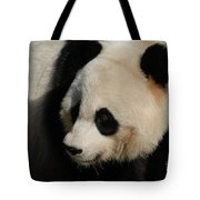 Up Close With A Gorgeous Giant Panda Bear Tote Bag