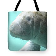Up Close With A Manatee Tote Bag