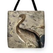 Up Close With A Pelican On A Sand Beach Tote Bag