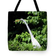 Up In The Tree Tote Bag