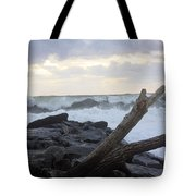 Up On The Rocks Tote Bag