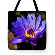 Upbeat Violet Elegance - The Beauty Of Waterlilies  Tote Bag