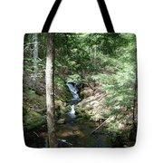 Upper Adler Falls 4405 Tote Bag