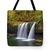 Upper Butte Creek Falls In Autumn Tote Bag