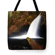 Upper Butte Creek Falls Tote Bag