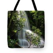 Upper Catawba Falls Tote Bag