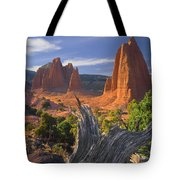 212645-upper Cathedral Valley  Tote Bag