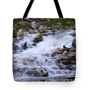 Upper French Creek 2 Tote Bag