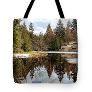 Upper Pond Reflections Tote Bag