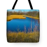 Upper Roxborough Reservoir Tote Bag