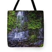 Upper Terrace Falls Tote Bag