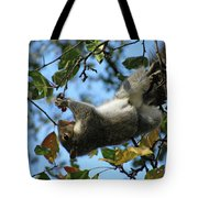 Upside Down Lunch Tote Bag