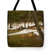 Upstream From The Basin Tote Bag