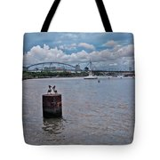 Urban Pelicans Tote Bag