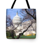 Us Capitol Building And Cherry Tote Bag