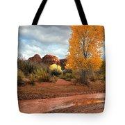 Utah Autumn Tote Bag