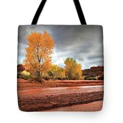 Utah Desert Wash Tote Bag