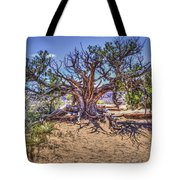 Utah Juniper On The Climb To Delicate Arch Arches National Park Tote Bag