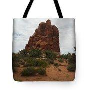 Utah Nature's Beauty Tote Bag