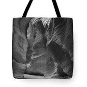 Utah Sculpture Tote Bag