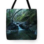 Uvas Canyon Waterfall II Tote Bag