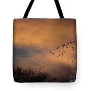 V Formation At Sunset  Tote Bag