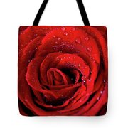Valentine Swirl Tote Bag by Tracy Hall