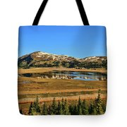 Valley Of Ghosts Tote Bag