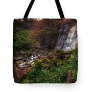 Valley Of Golden Light Tote Bag