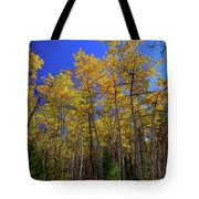 Valley Of The Five Lakes Trail Tote Bag