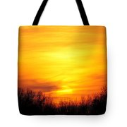 Valley Of The Sun Tote Bag