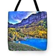 Valley Peak And Falls Tote Bag