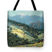 Valley Splendor Tote Bag
