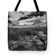Valley View No.29 Tote Bag