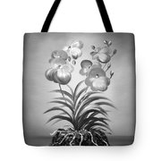 Vanda Orchids In Black And White Tote Bag