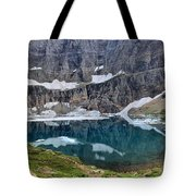 Vanishing Beauty Tote Bag