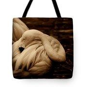 Vanity II Tote Bag