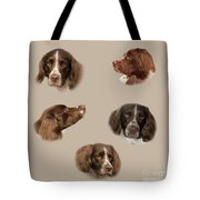 Variations Of A Spaniel Tote Bag