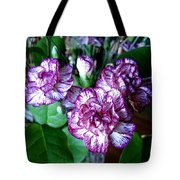 Variegated Carnations Tote Bag