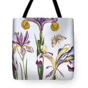 Variegated Iris Tote Bag
