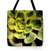 Variegated Succulent Tote Bag