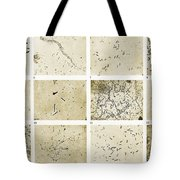 Various Bacilli Observed By Robert Koch Tote Bag