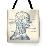 Vascular And Muscular System - Vintage Anatomy Print Tote Bag