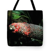 Vegetable Not Animal  Tote Bag