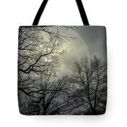 Veil Of Lunacy  Tote Bag